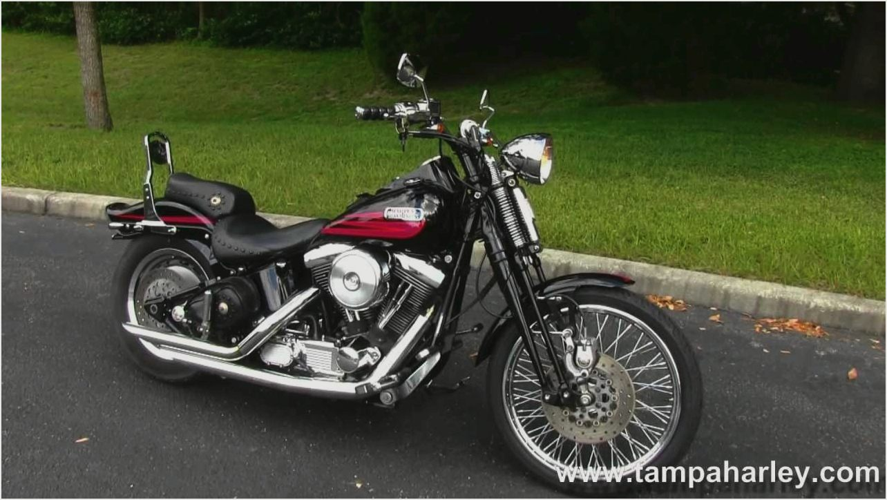 Harley-Davidson FXSTS Springer Softail 1995 images #81093