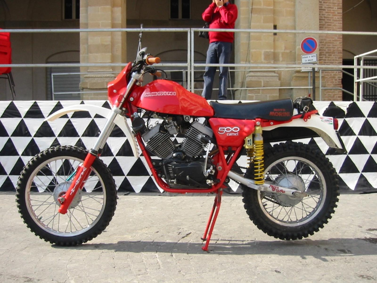 Maico MD 250 WK 1981 images #103509