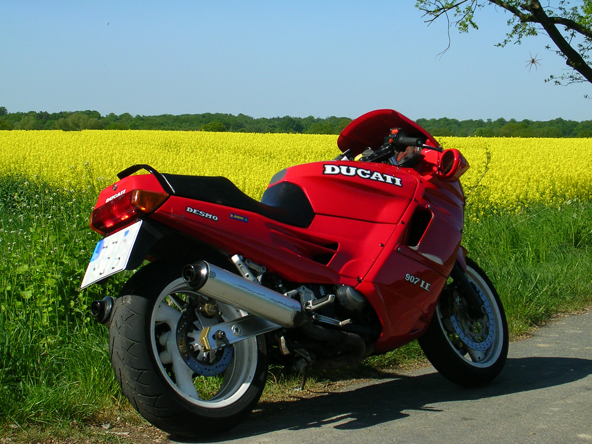 Ducati 907 i.e. 1991 wallpapers #11905