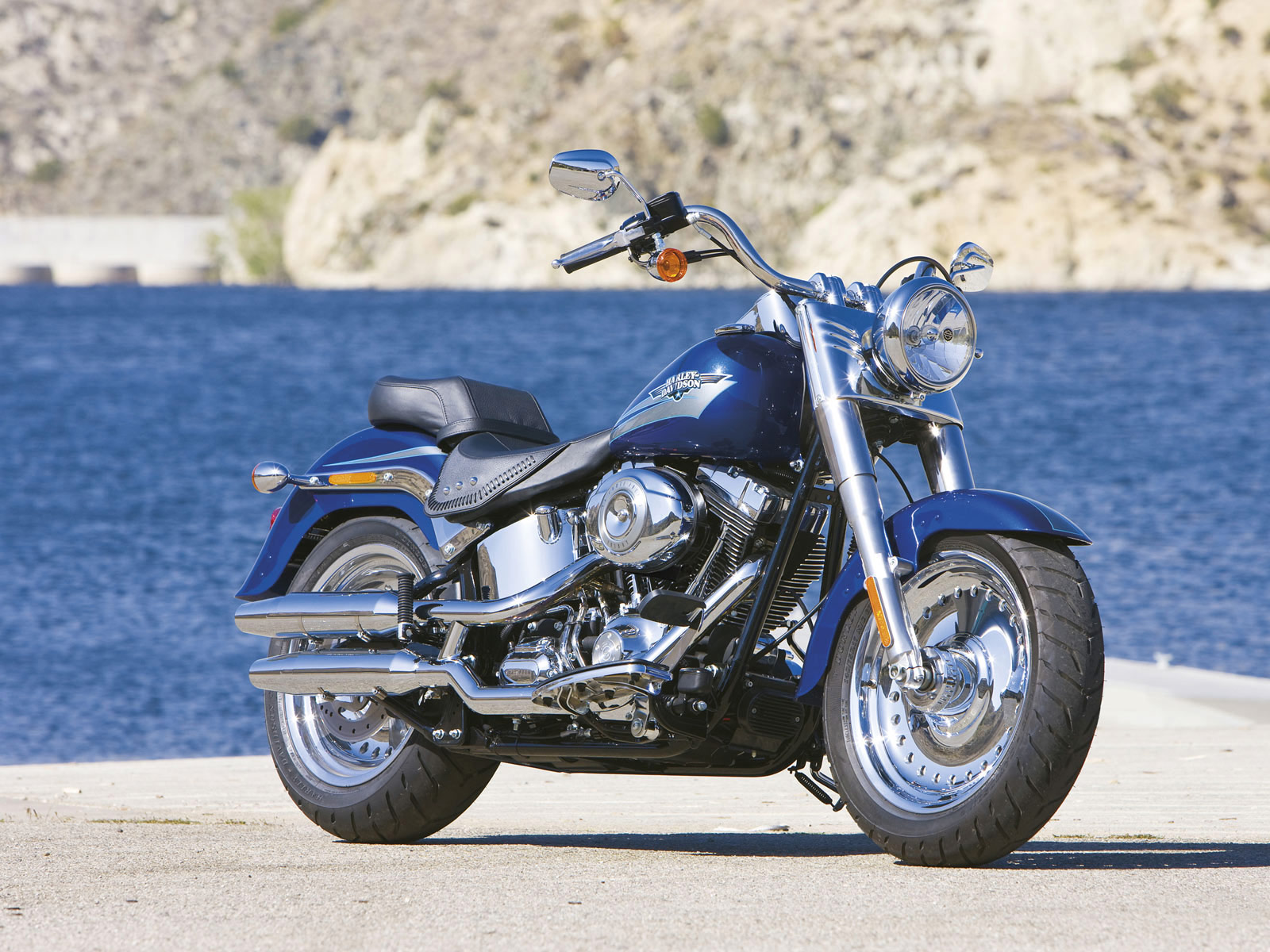 Harley-Davidson FLSTF Fat Boy 2009 images #80412