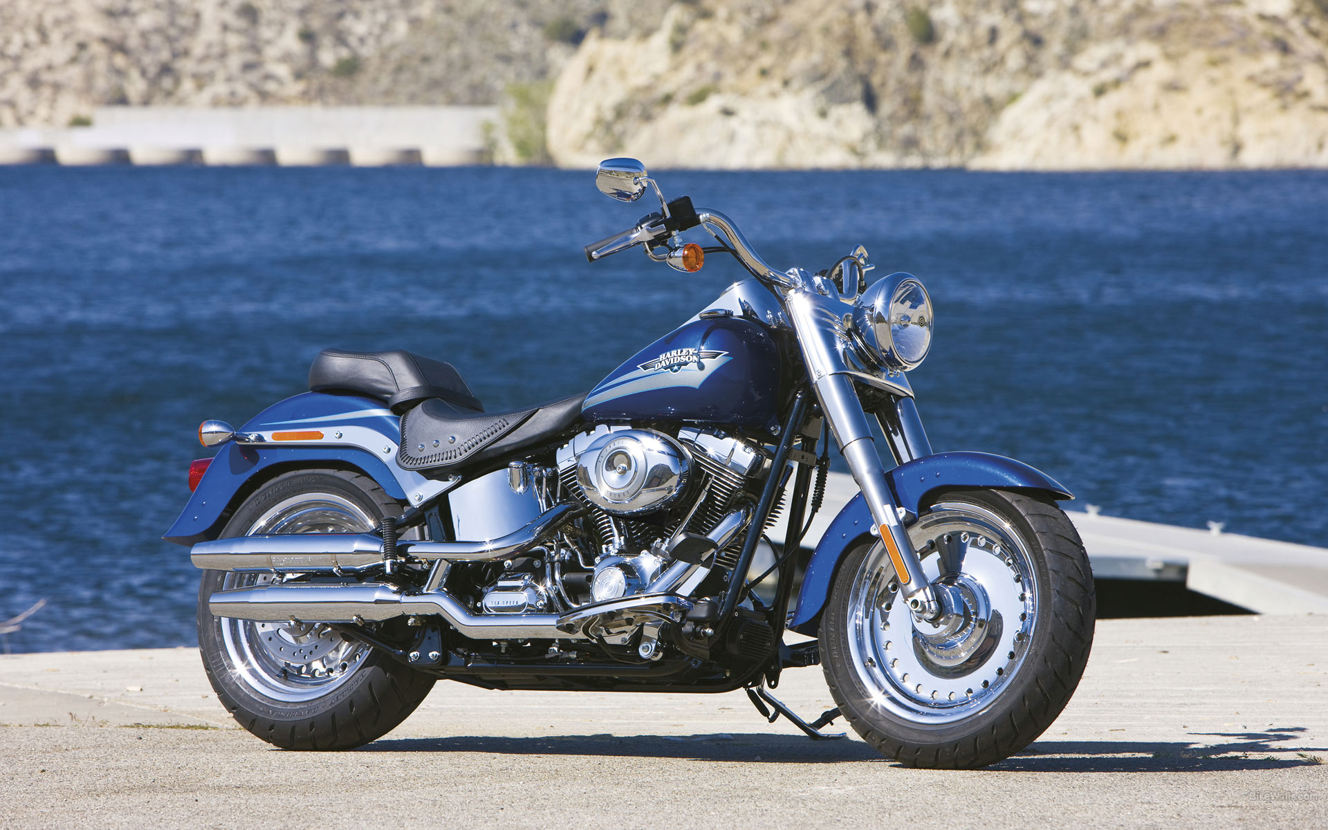 Harley-Davidson FLSTF Fat Boy 2009 images #80413