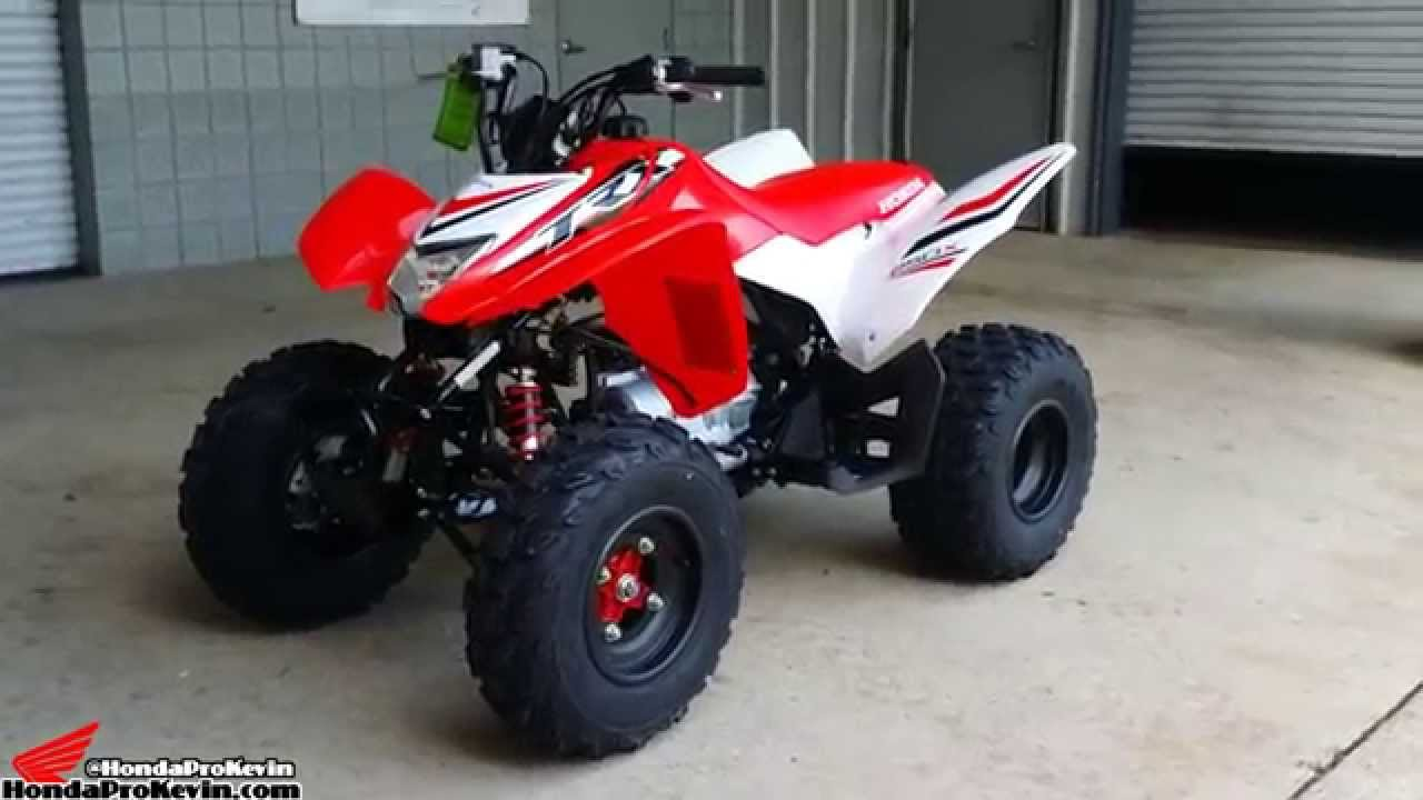 Honda trx250x pics specs and list of seriess by year for Ecksofa 250 x 250