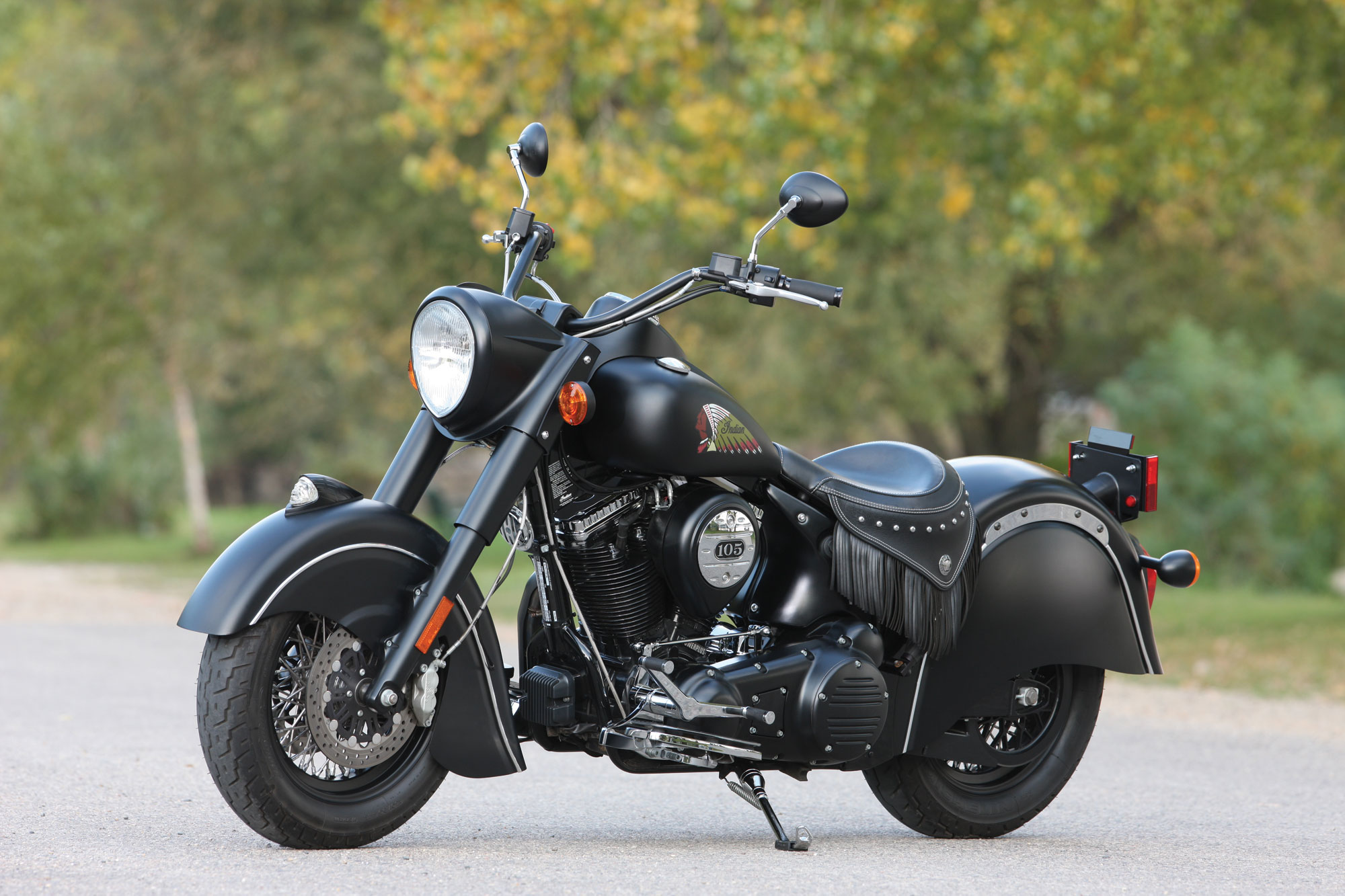 Indian Chief Standard images #97771