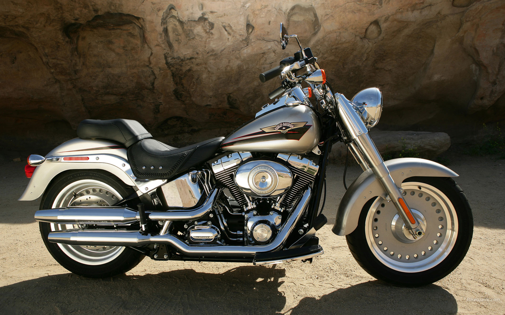 Harley-Davidson FLSTF Fat Boy 2009 images #80419