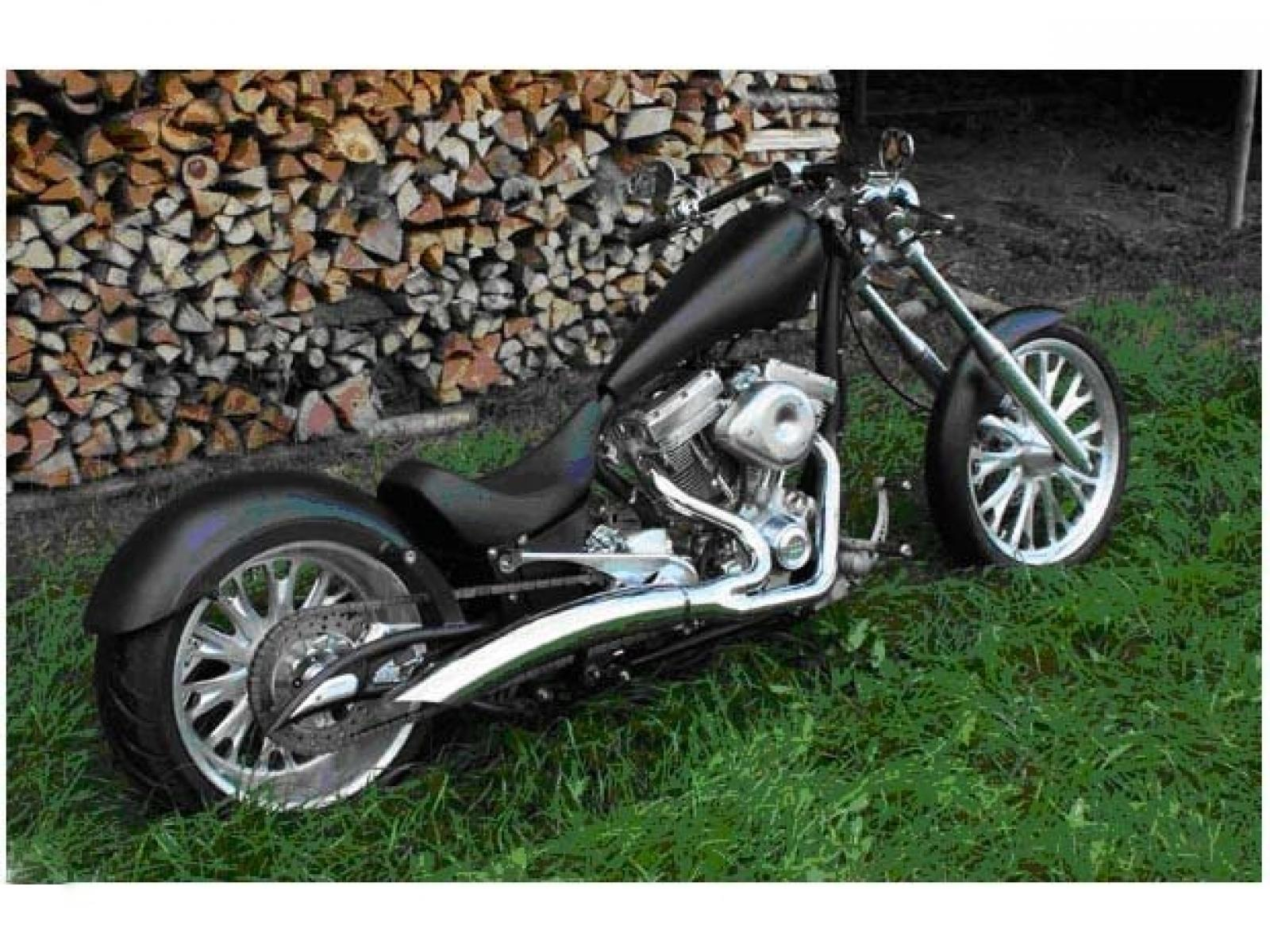 Big Bear Choppers Bear Bones 100 Smooth Carb 2010 images #63785