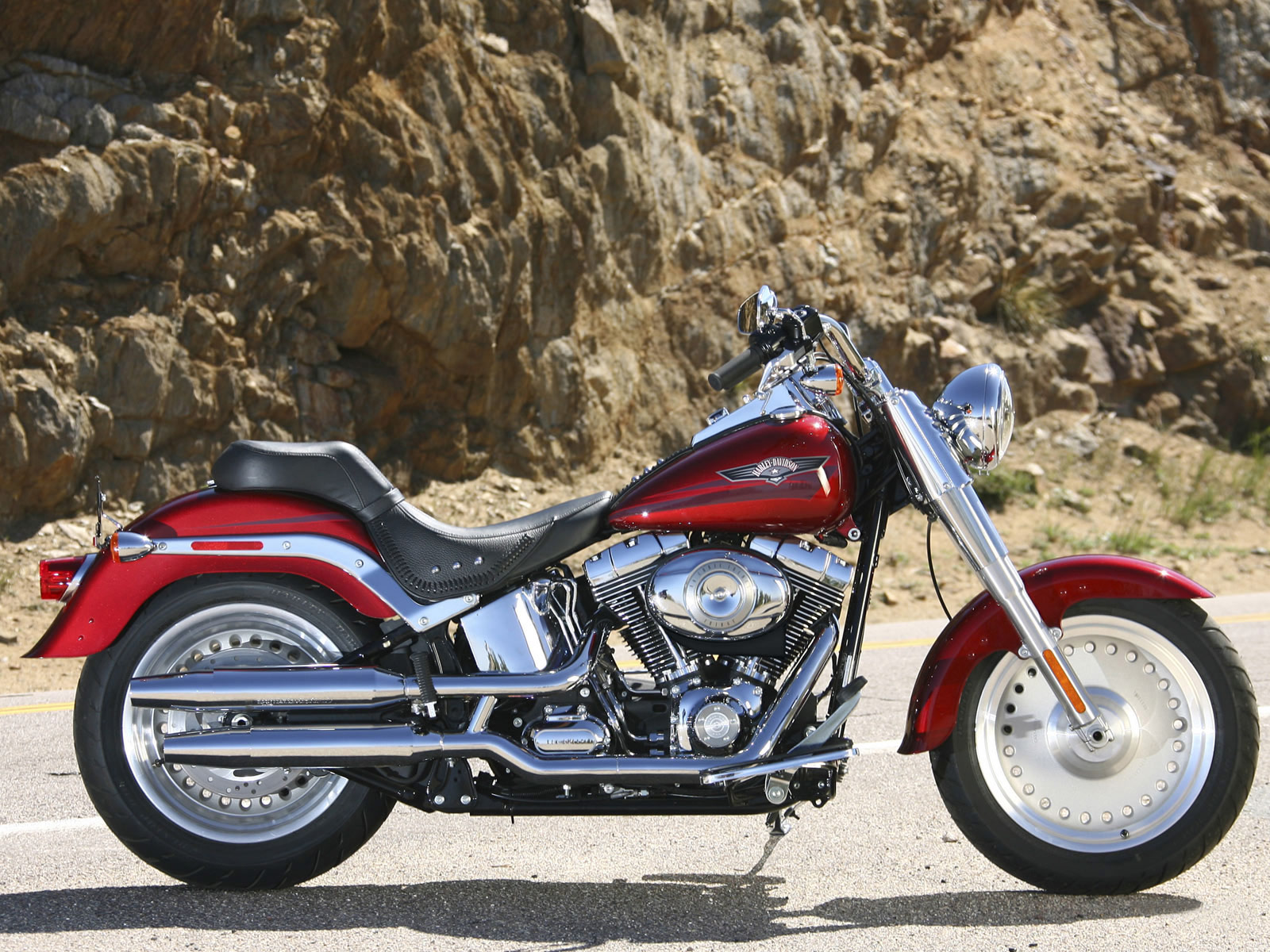 Harley-Davidson FLSTF Fat Boy 2009 images #80424