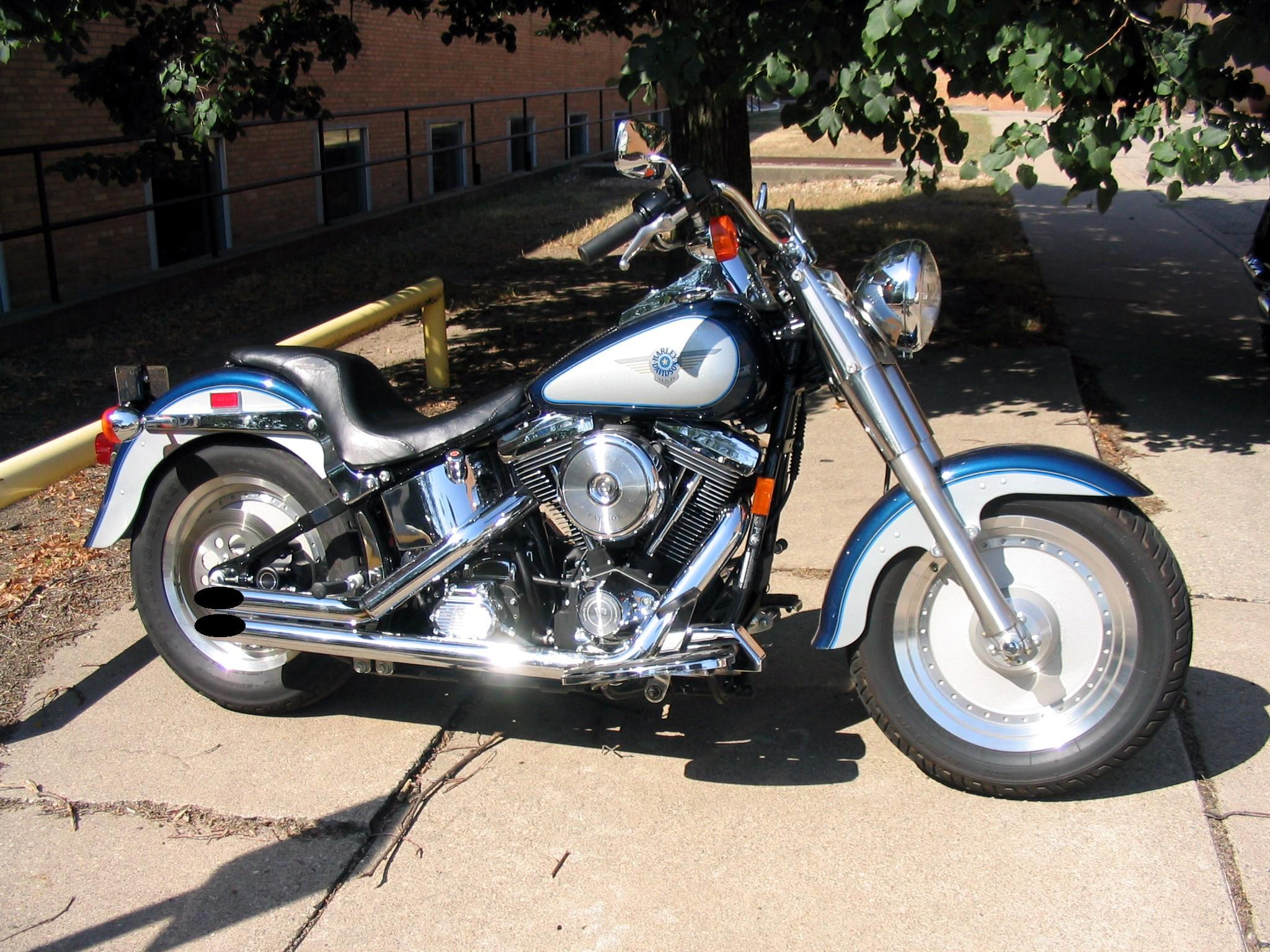 Harley-Davidson FLSTF Fat Boy 2009 images #80425