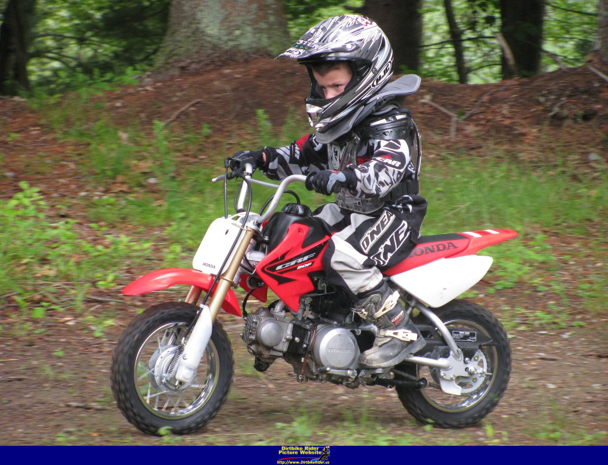 honda crf 50 f pics specs and list of seriess by year   onlymotorbikes