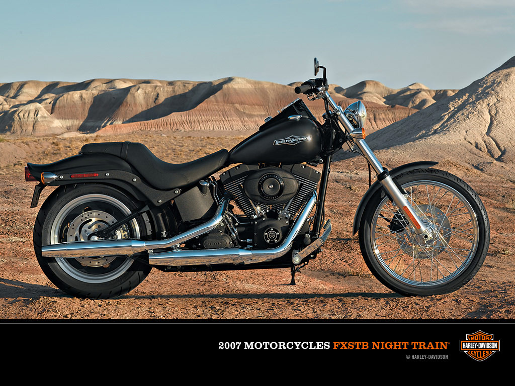Harley-Davidson FXSTB Night Train 2007 pics #18389