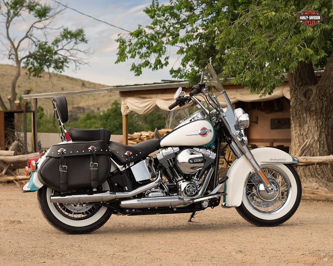 Harley-Davidson FLSTC Heritage Softail Classic 1994 images #80637