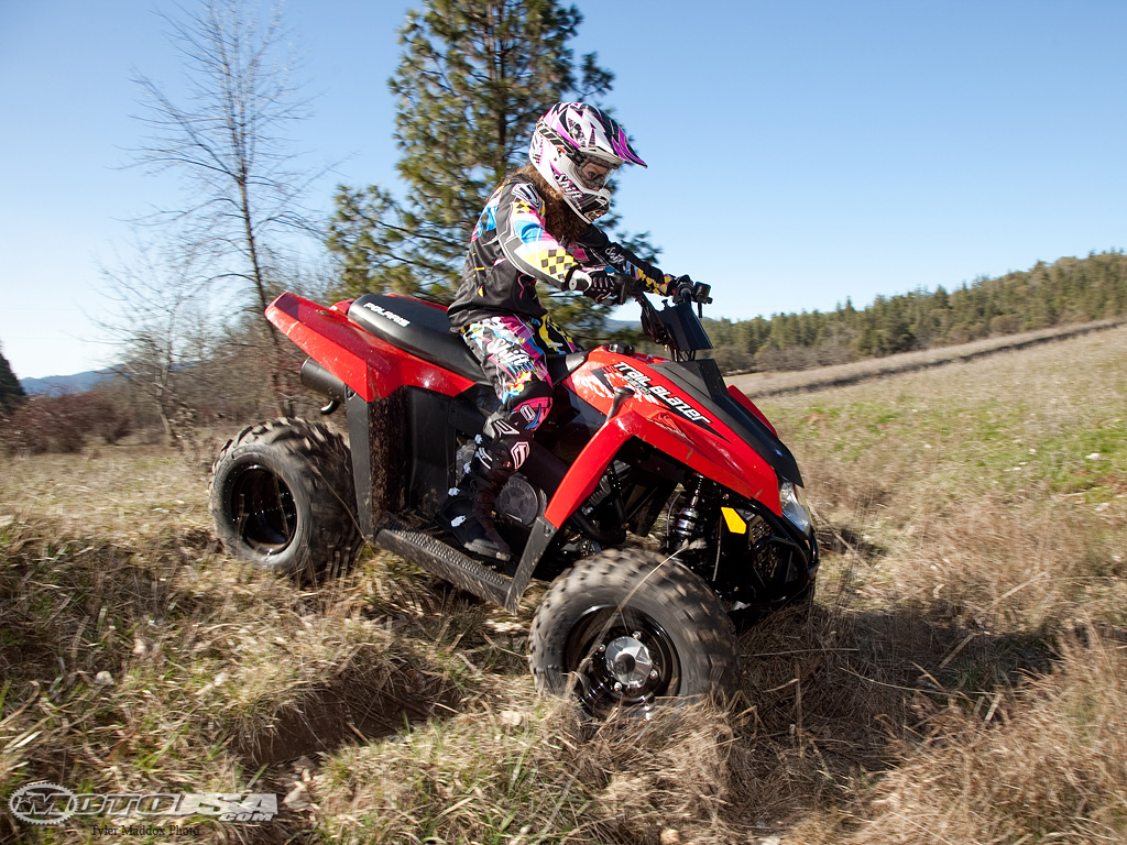Polaris Trail Boss 330 2008 images #169655