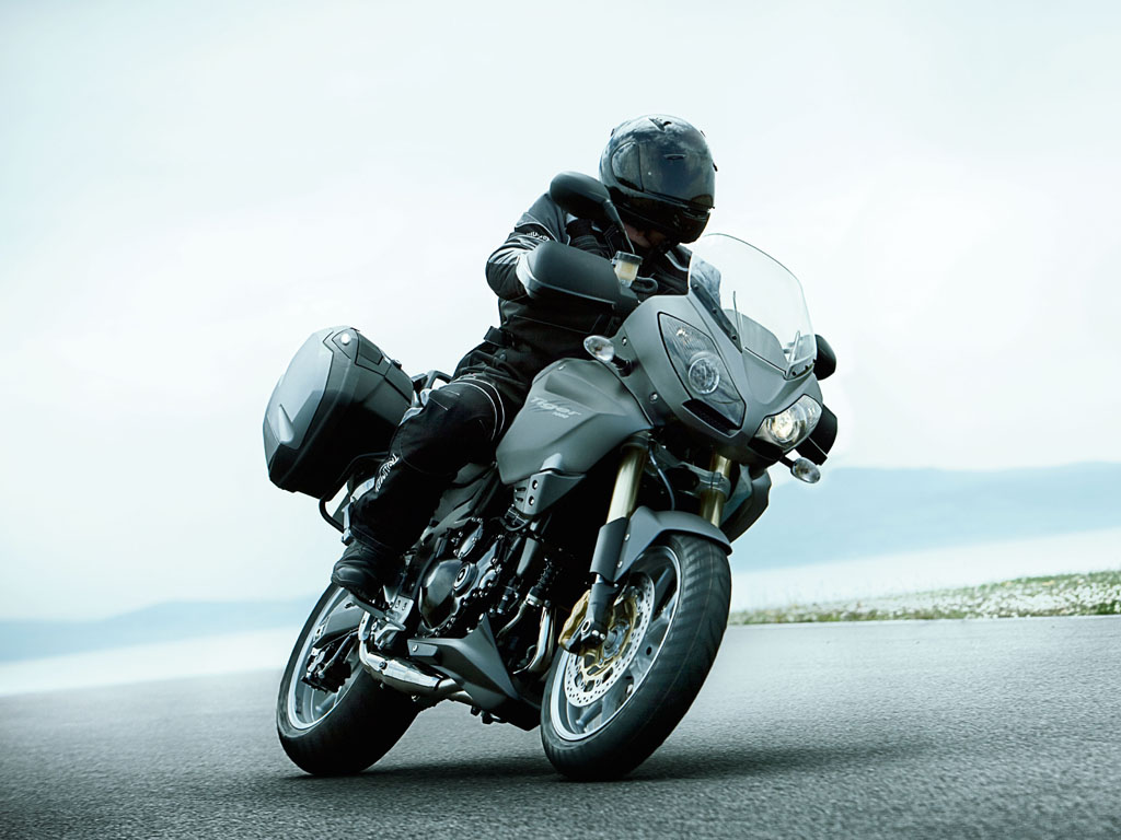Triumph Tiger Special Edition 2010 images #126651