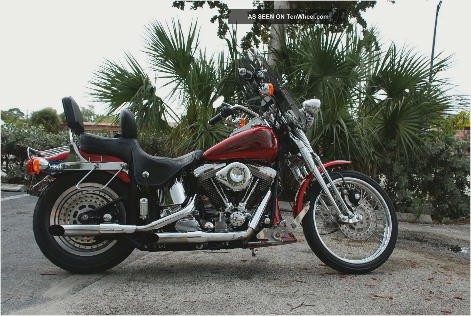 Harley-Davidson FXSTS Springer Softail 2004 images #81250