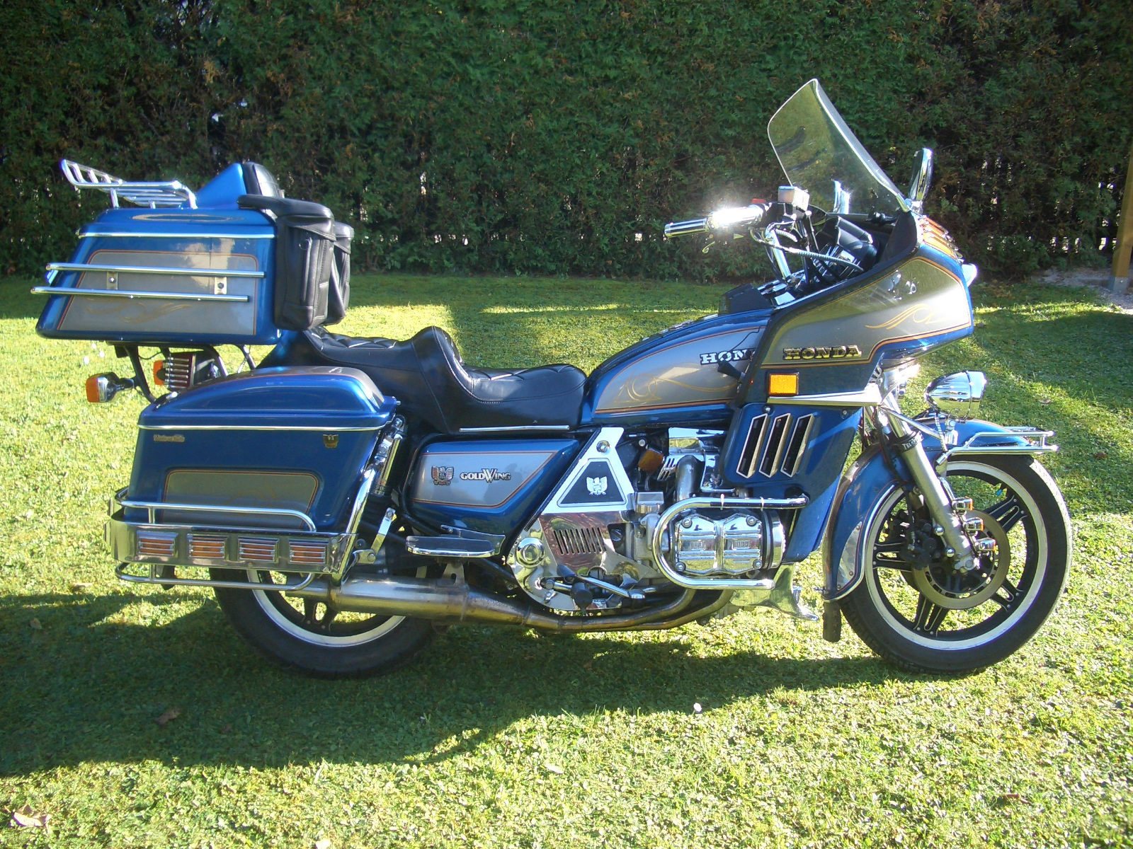 Honda GL 1200 Gold Wing images #80952