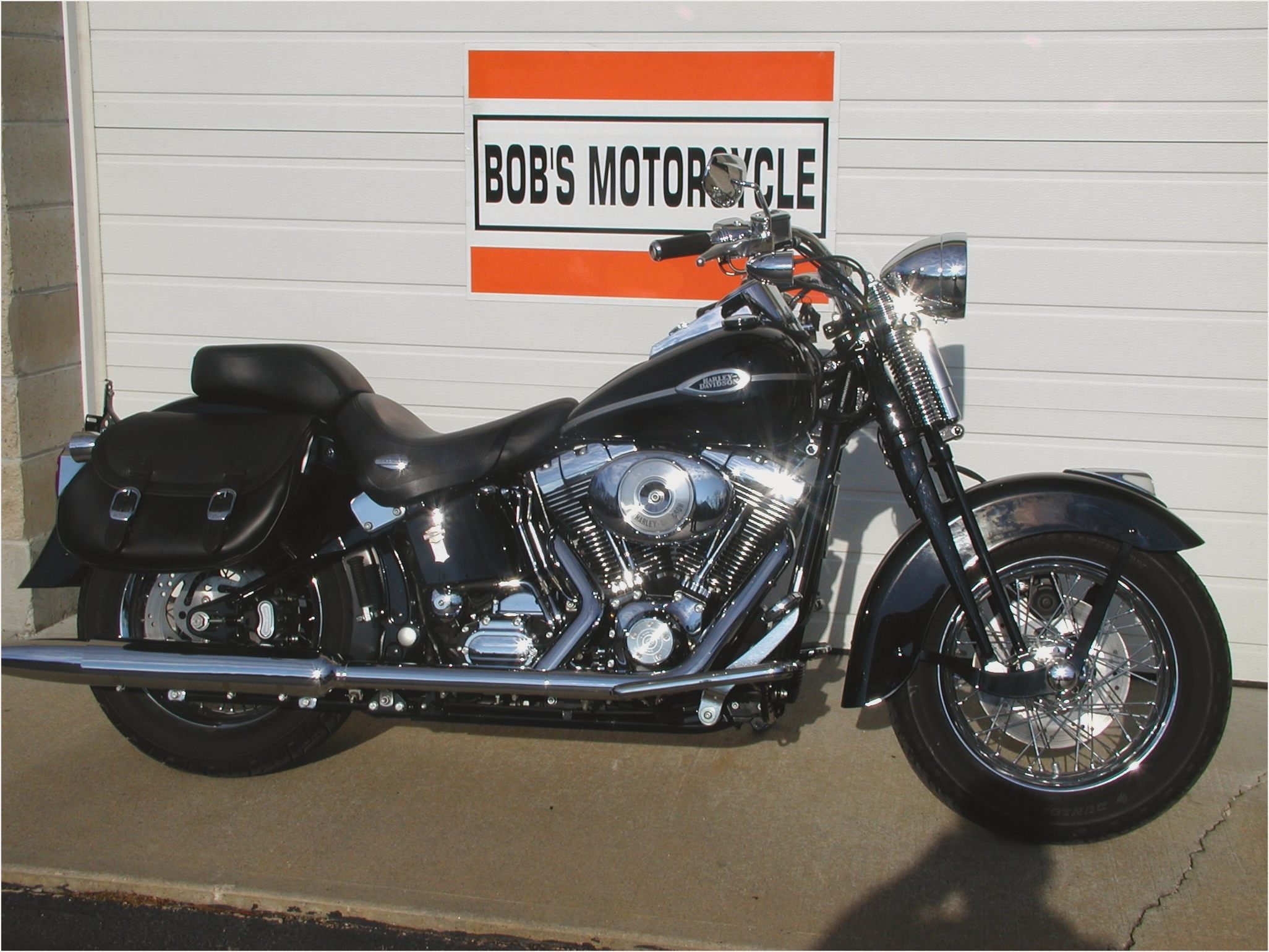 Harley-Davidson FXSTS Springer Softail 2004 images #81256
