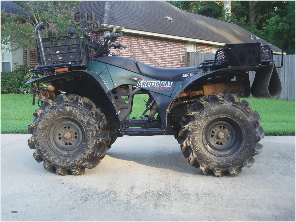 Arctic Cat 500 2000 images #155888