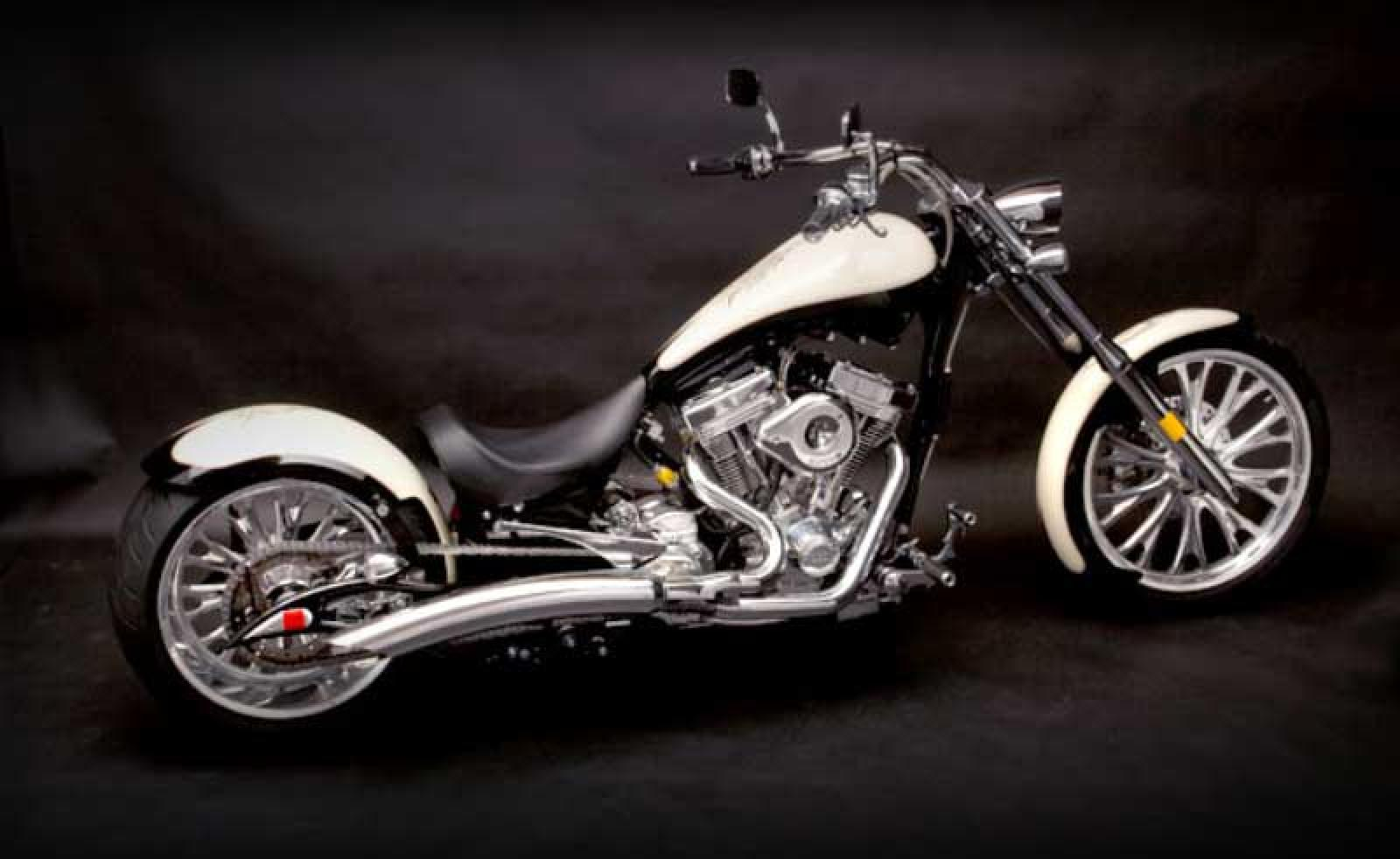 Big Bear Choppers Venom 100 Smooth EFI 2010 images #63833