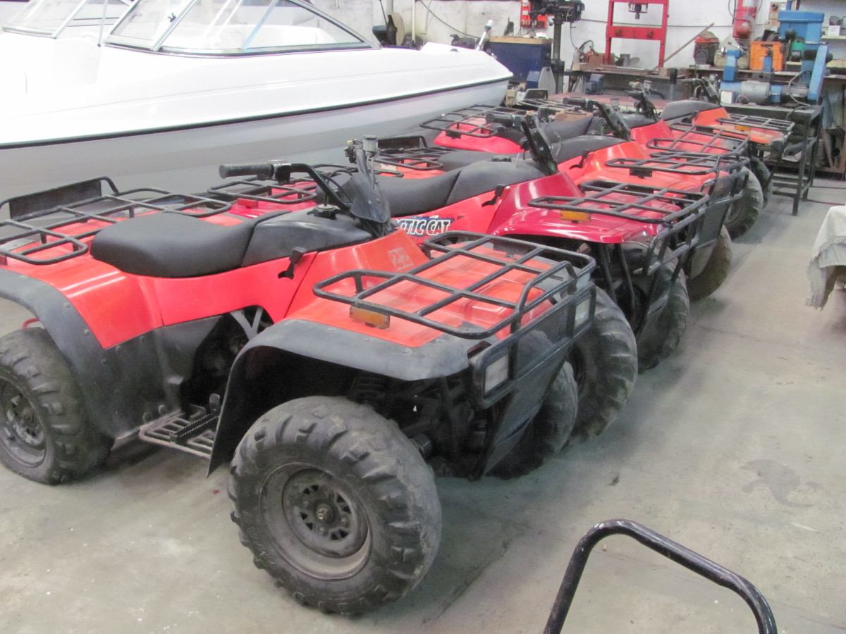 Arctic Cat 500 images #155895