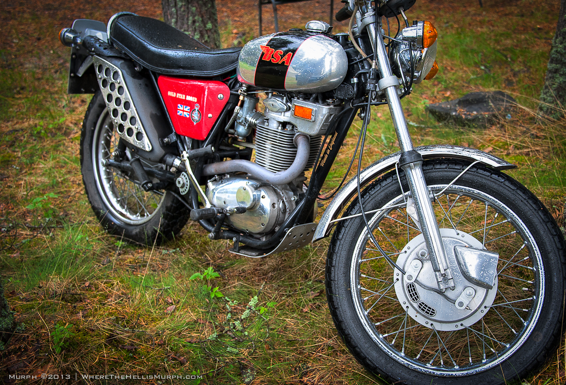 BSA 500 SS Gold Star 1971 images #93865