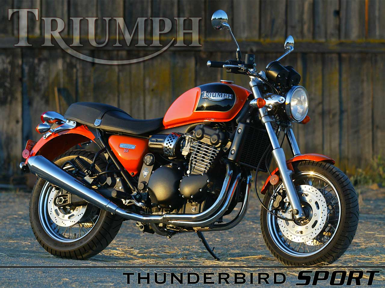Triumph Thunderbird 900 Sport 2004 wallpapers #130116