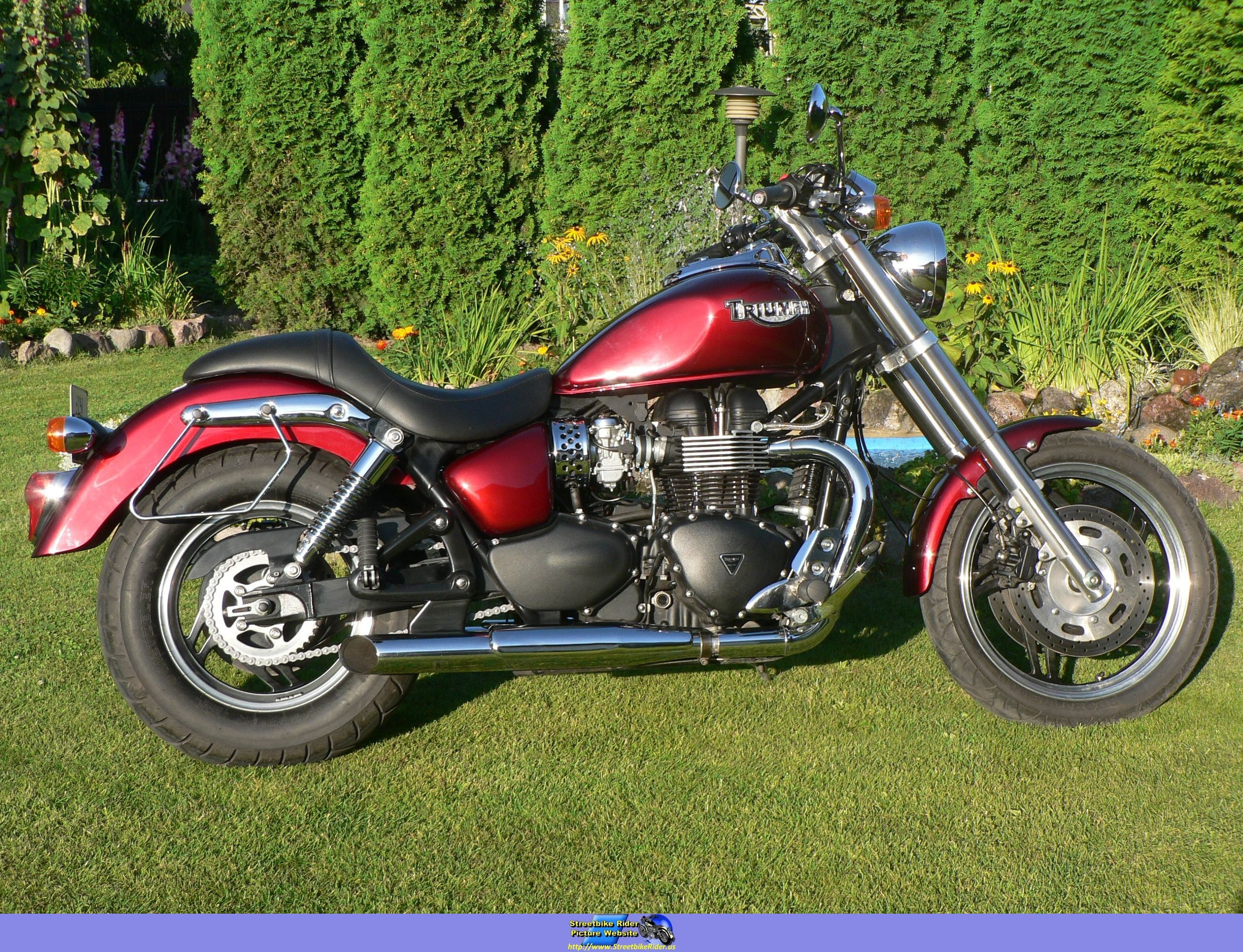 2007 triumph speedmaster pics specs and information. Black Bedroom Furniture Sets. Home Design Ideas