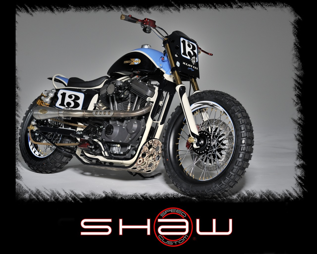 Walz Hardcore Cycles Barracuda 2007 wallpapers #131509