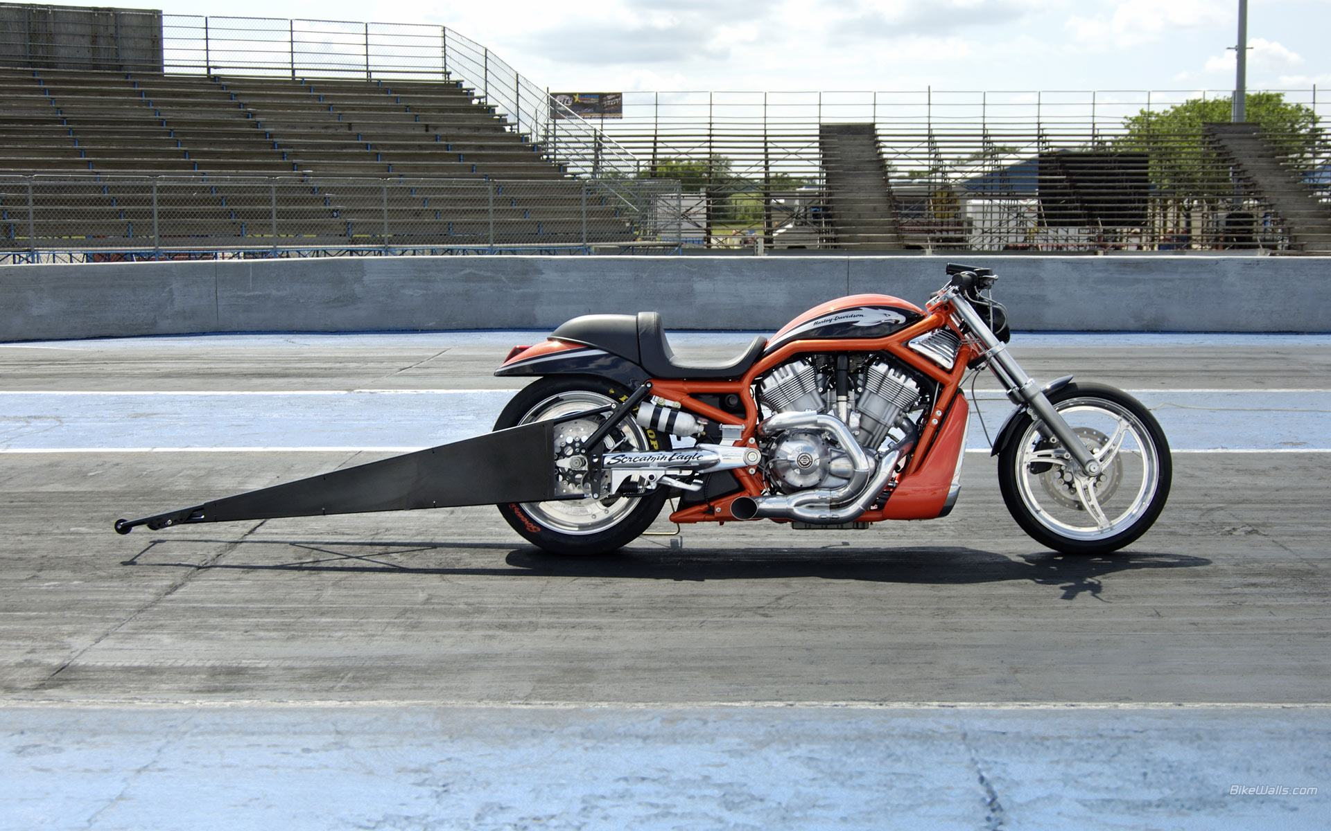Harley-Davidson VRXSE Screamin Eagle Destroyer 2009 pics #18945
